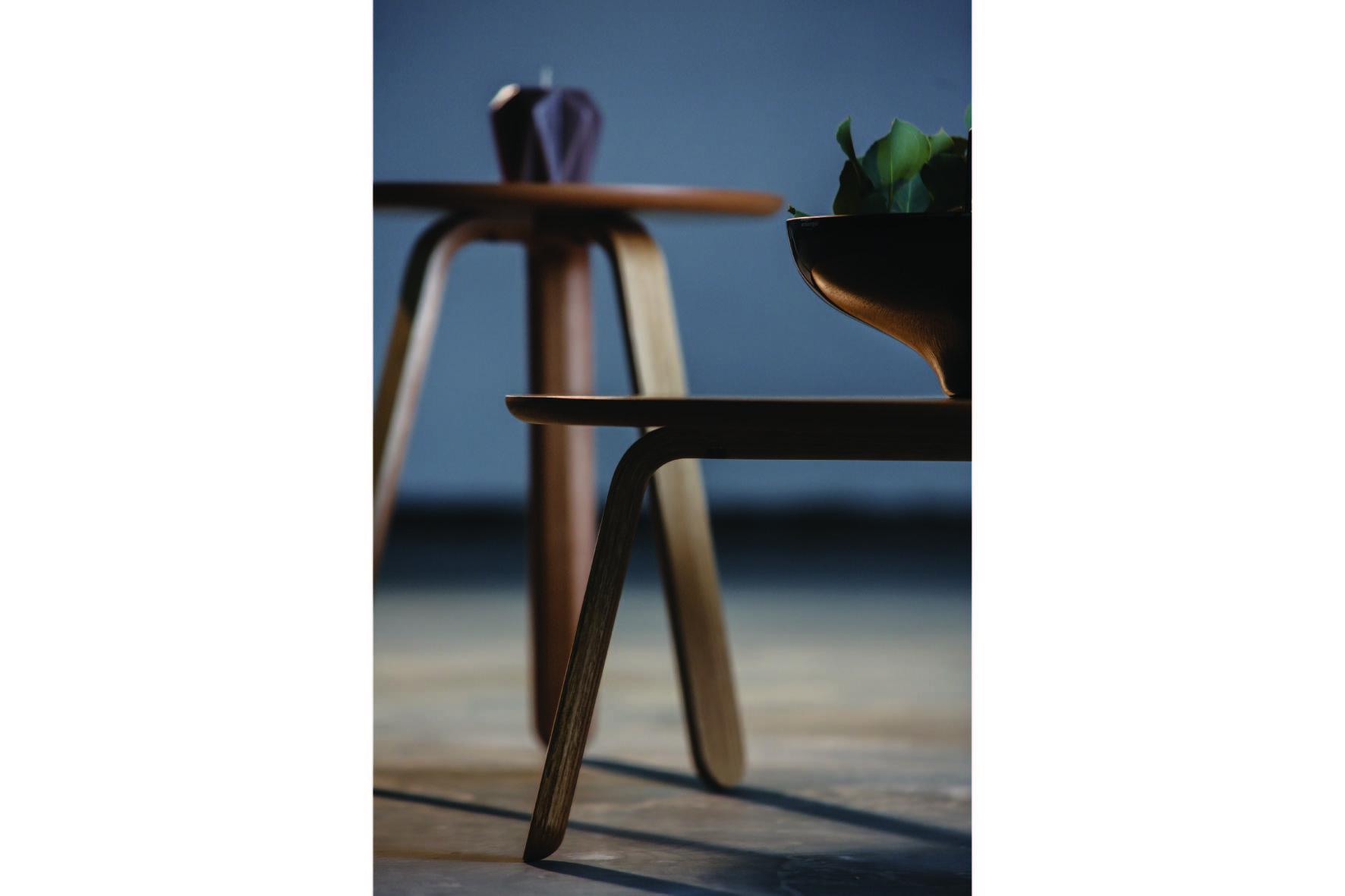 Dižozols bent wood design tables (8)